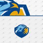 Spectacular Falcon eSports Logo For Sale | Falcon Mascot Logo