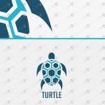 Simple & Creative Turtle Logo For Sale